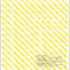 Back side Standard security Rx Paper